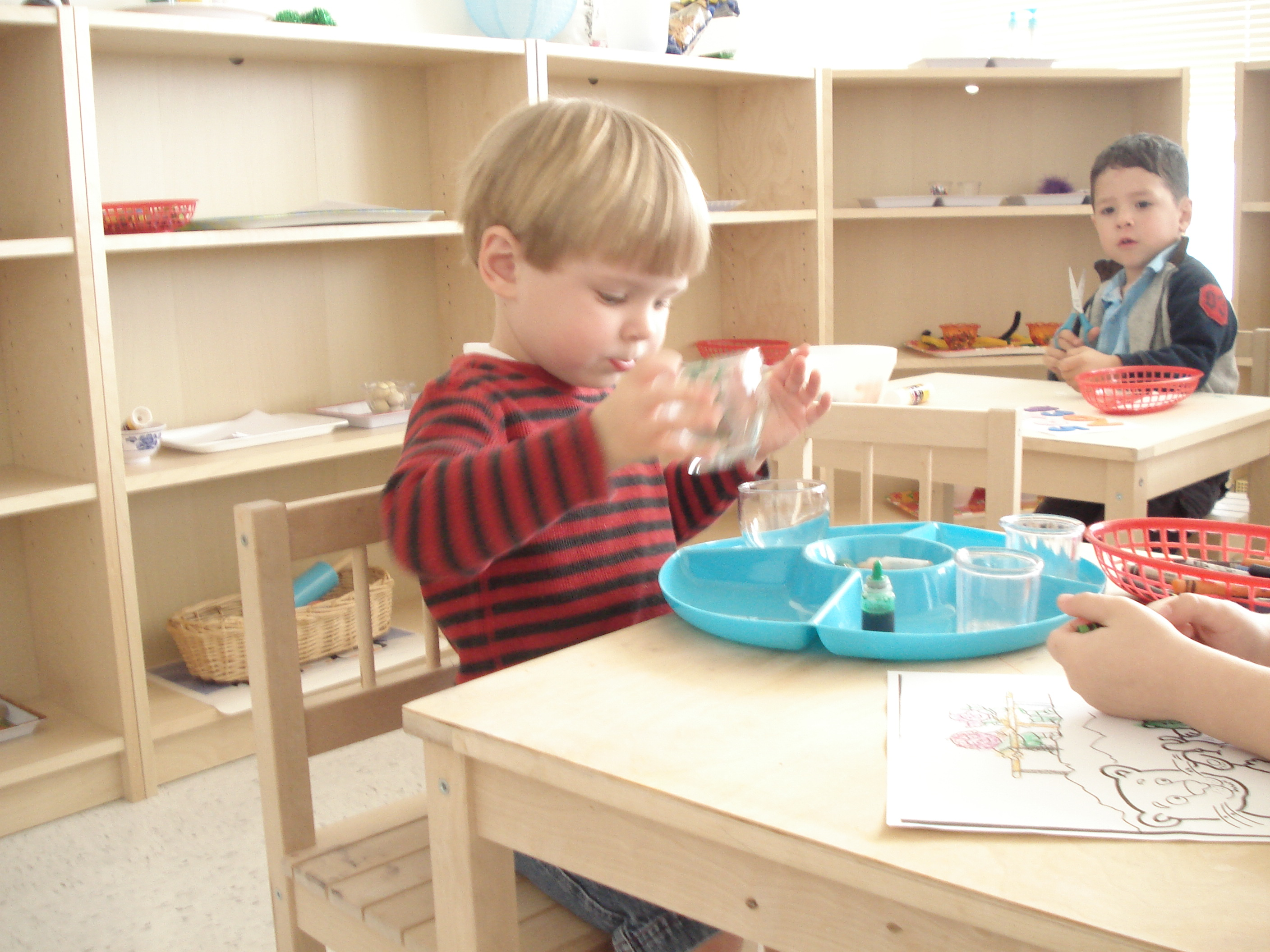 symbiotic period montessori The association montessori internationale was founded in 1929 by dr maria montessori in order to further the rights of the child in society and protect the integrity of the montessori method of education.